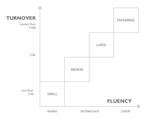 eCommerce Maturity Framework