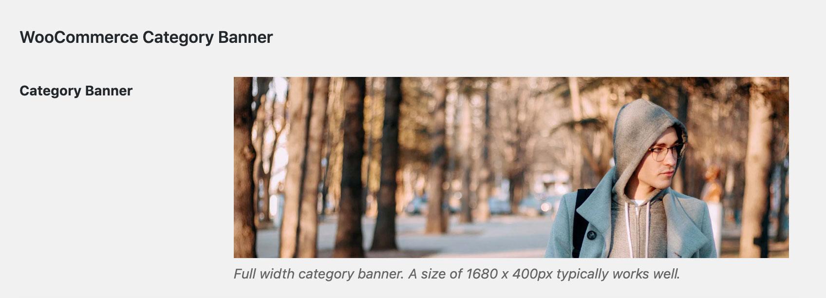 Shoptimizer full width category banner