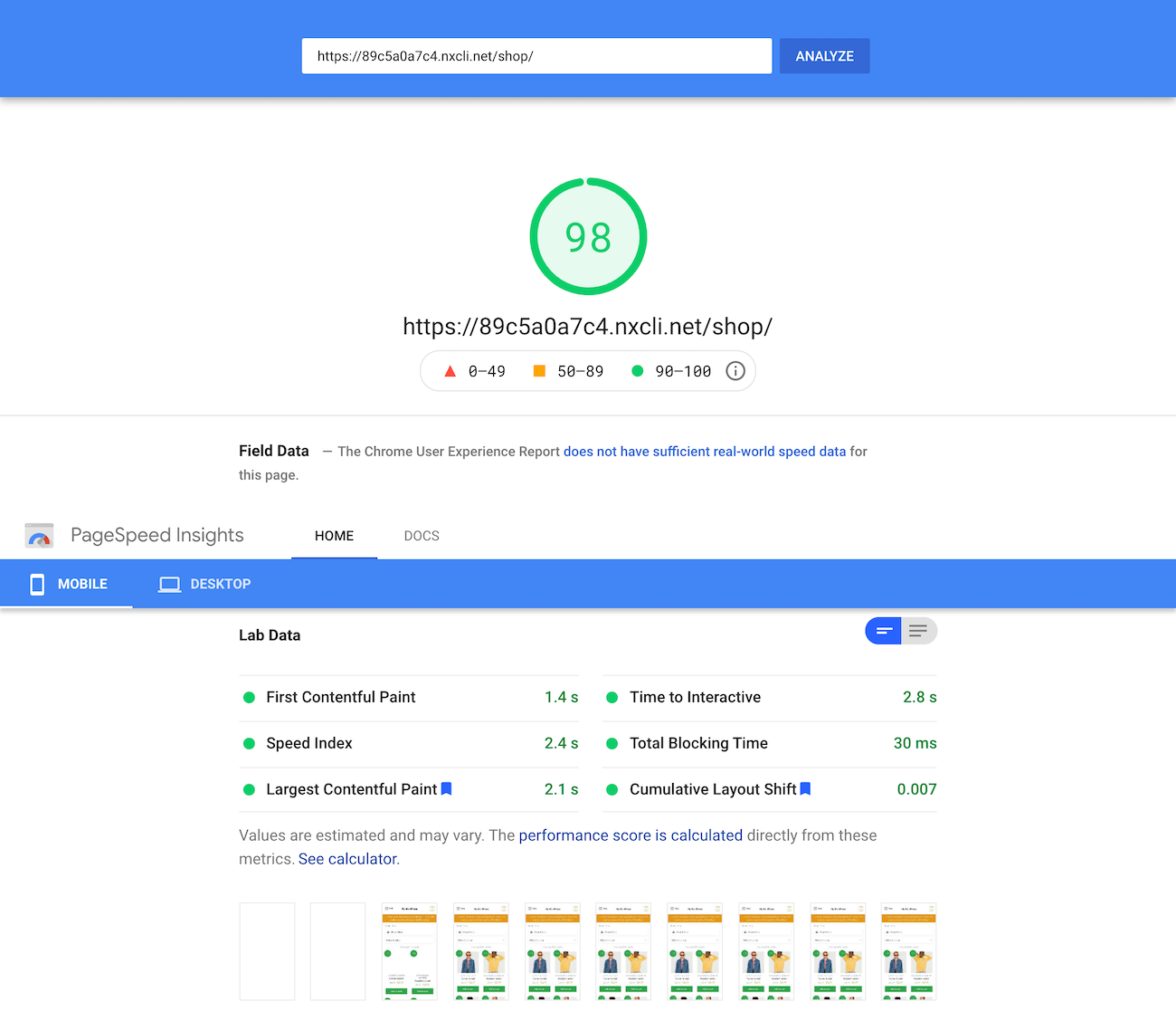Google PageSpeed Insights test of the shop page
