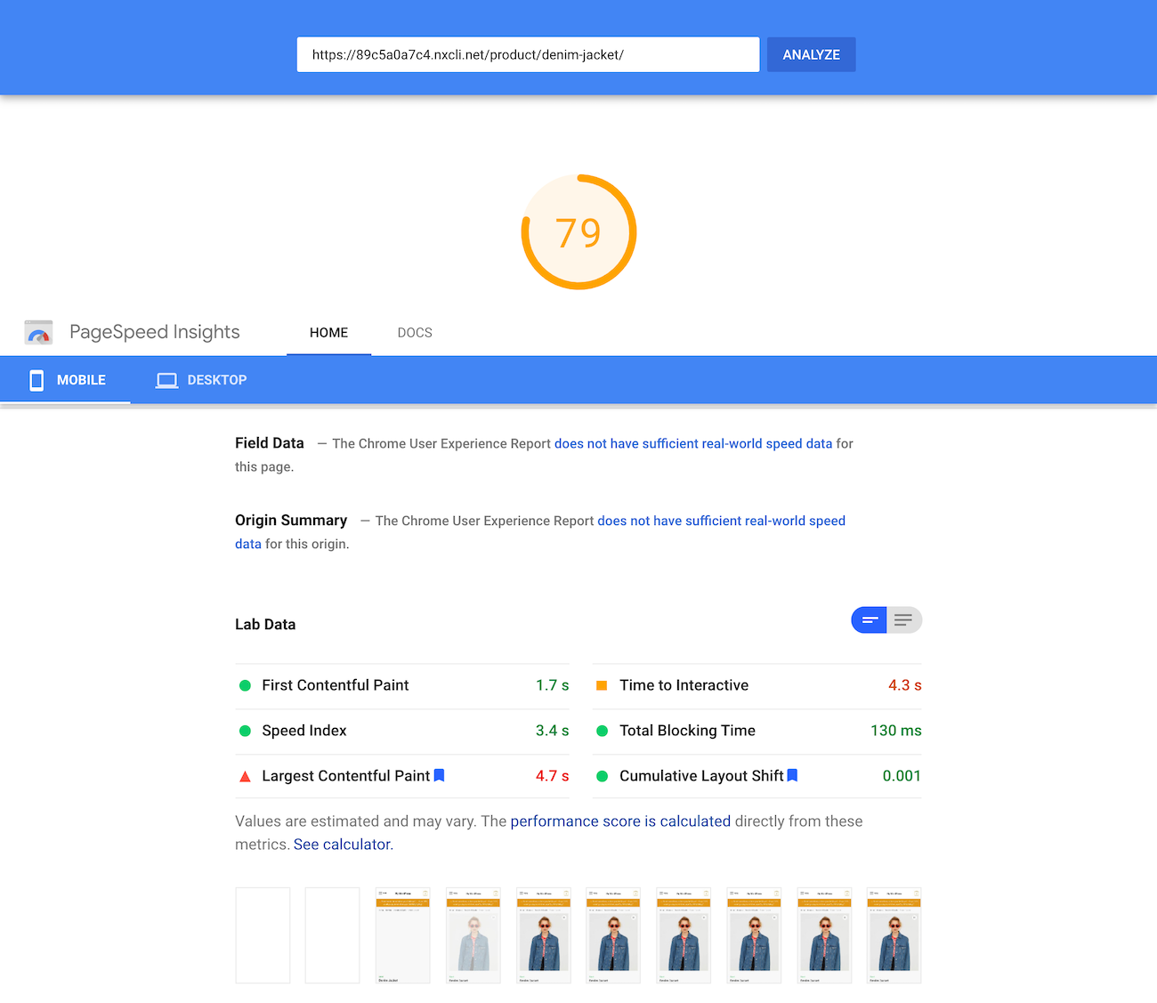Google PageSpeed Insights test of the single product page