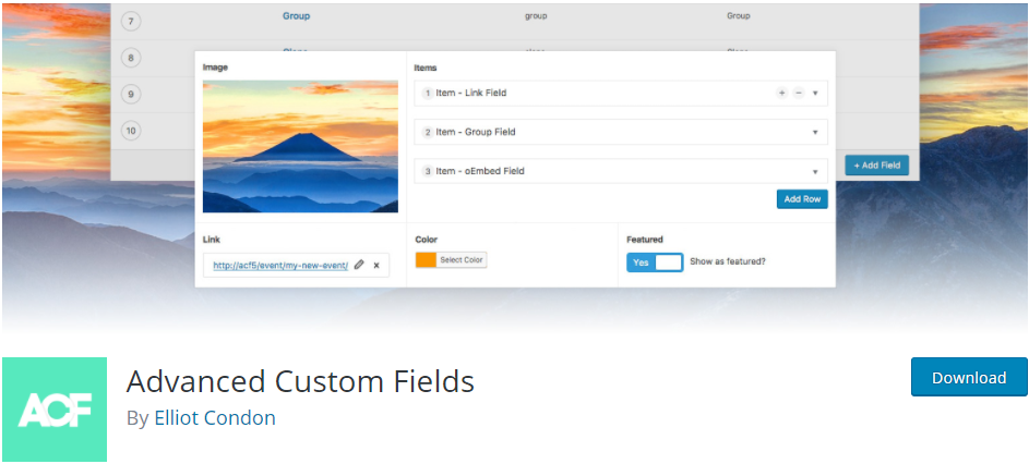Advanced Custom Fields plugin