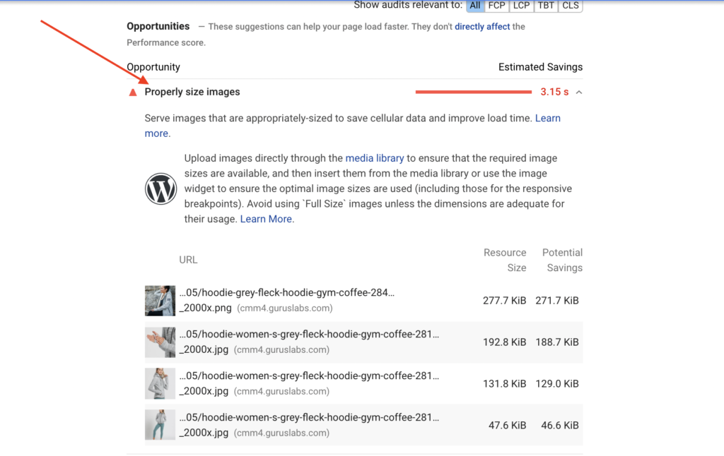 Properly size images - Google PageSpeed Insights Warning