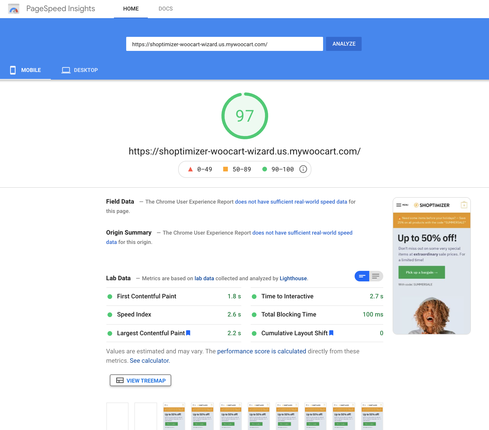 Google PageSpeed Insights Mobile score