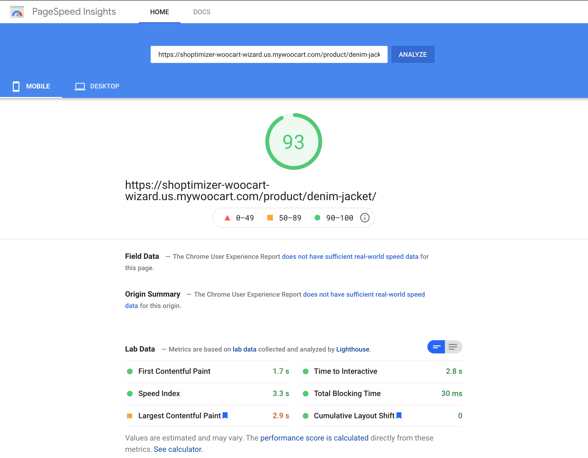 Google PageSpeed Insights Single Product Page Result