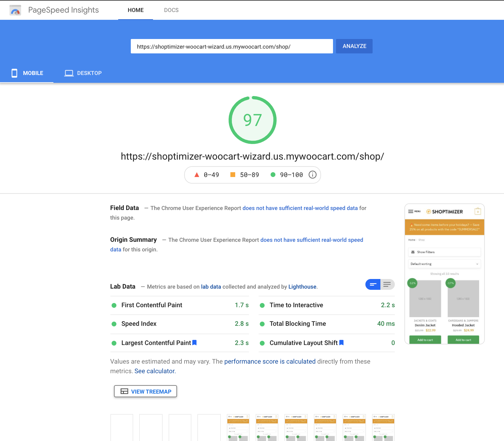 Google PageSpeed Insights Shop Result